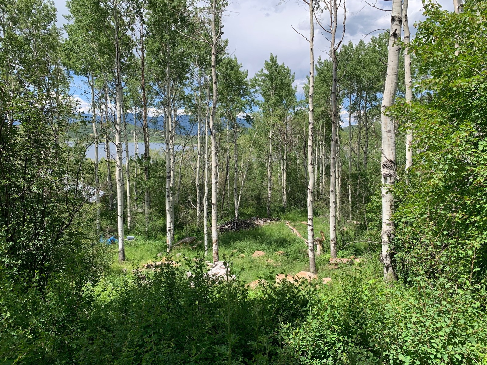 Vacant Land For Sale in Colo with Aspen Trees & Water Views
