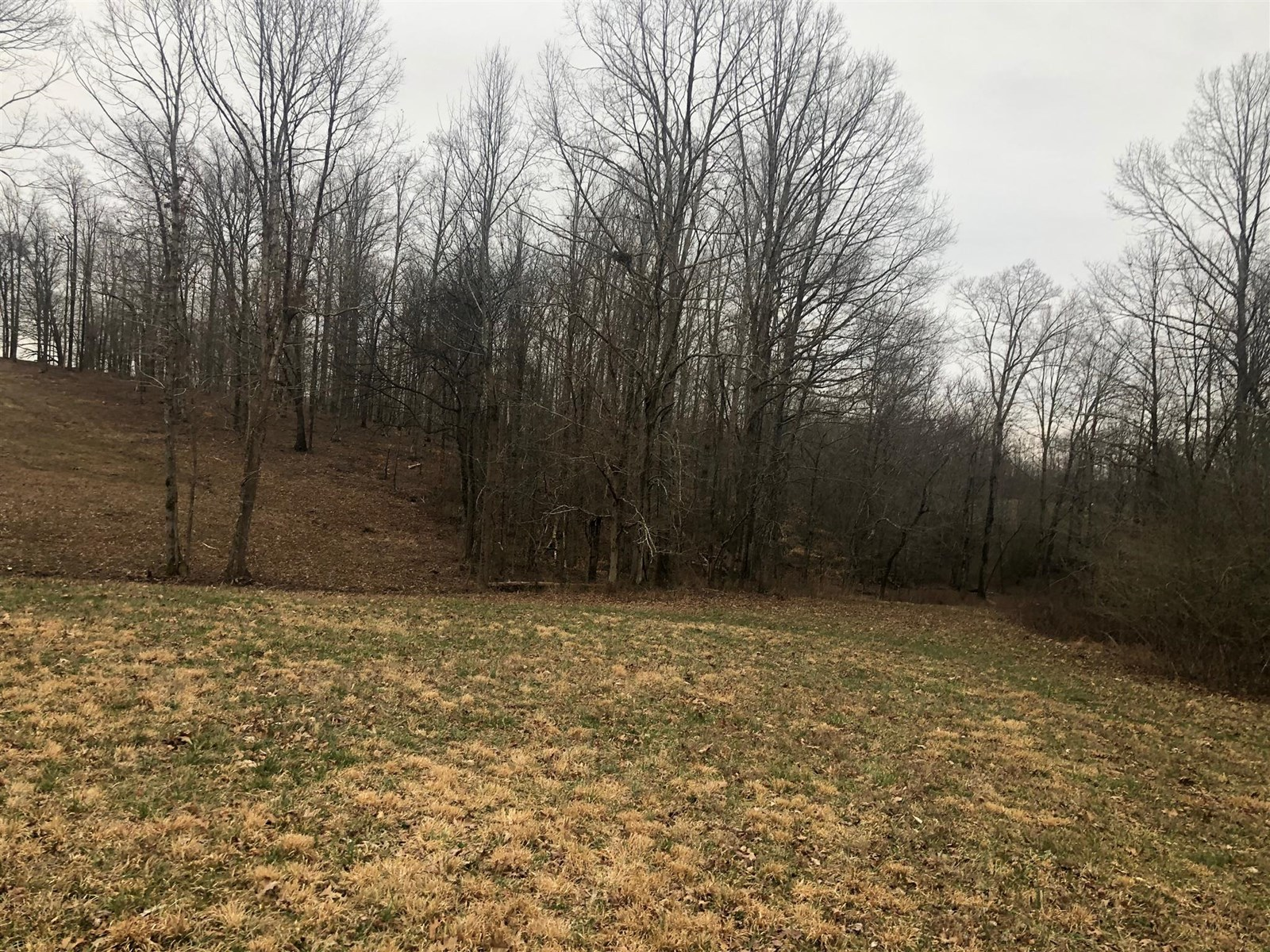 Williamson County Acreage For Sale