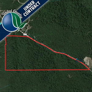 WOODED HUNTING LAND NEAR THE GASCONADE RIVER FOR SALE IN MO!