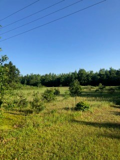 Acreage for Sale in Portage County WI