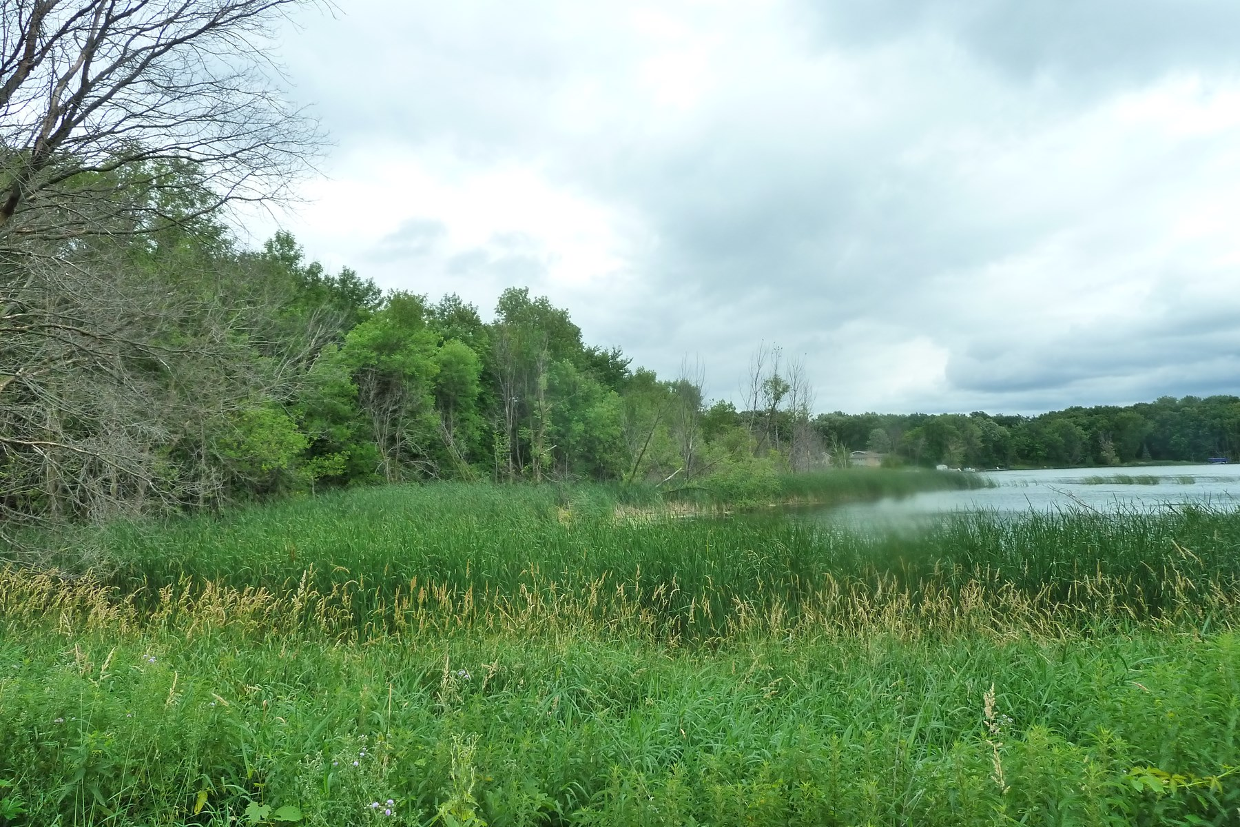 34+ Acres on Indian Lake - xxx 110th St. NW, Maple Lake, MN - Ends 8/9/19