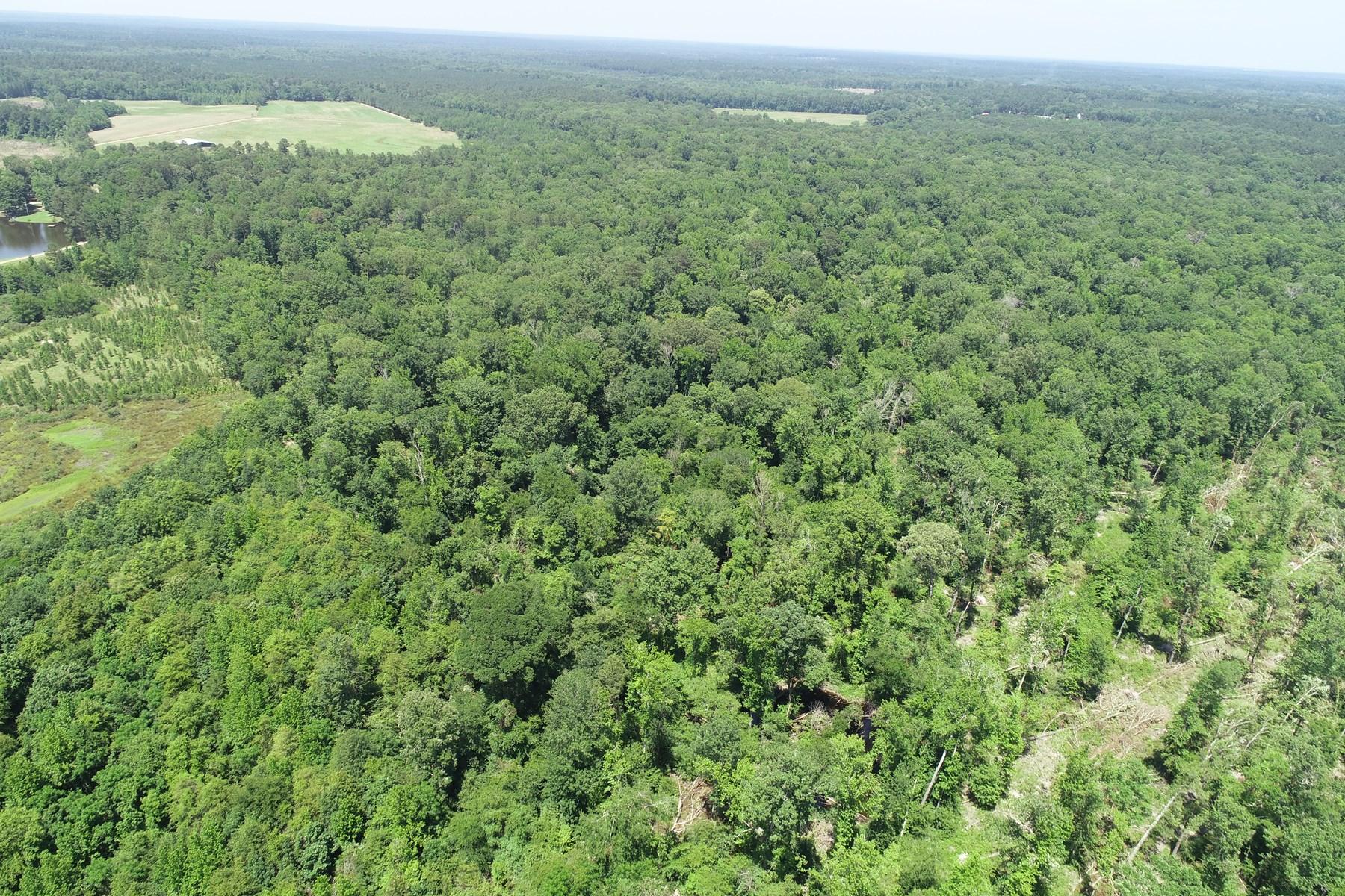 Hardwood Creek Bottom Land for Sale west of El Dorado, AR