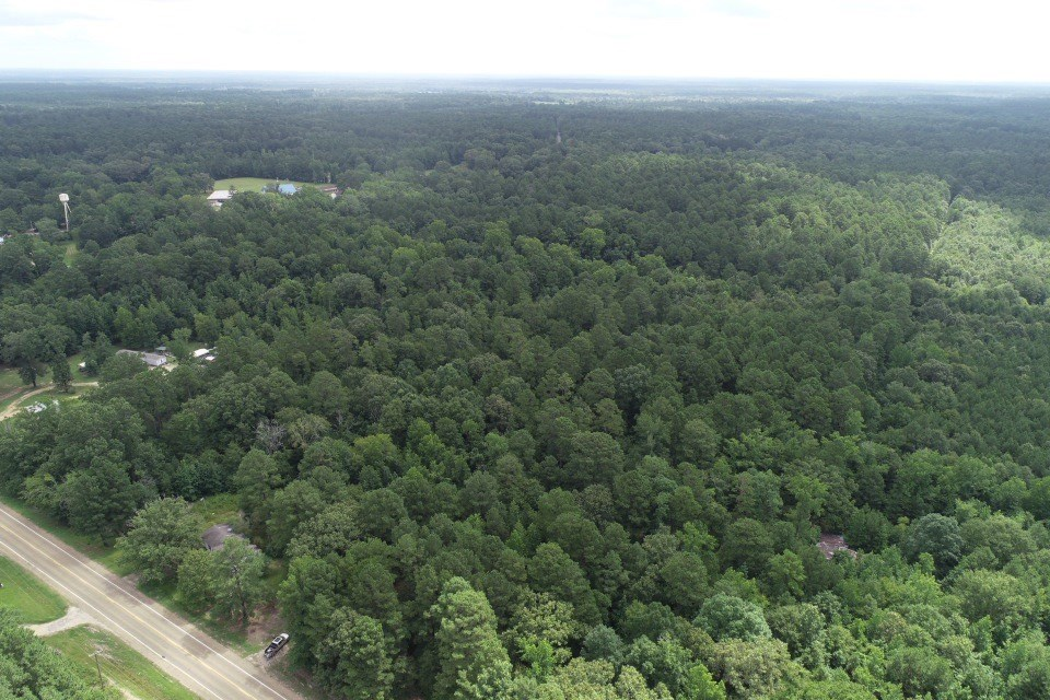 Recreational Timberland W/ Utilities near Mount Holly, AR