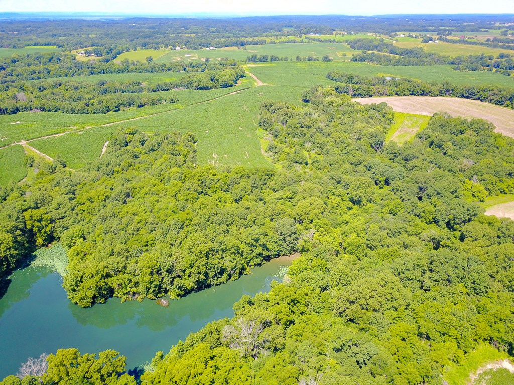 Pike County Illinois Farm and Hunting Property For Sale