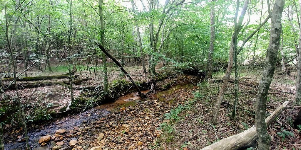 Large Recreational Acreage in Axton, VA: Henry County, VA