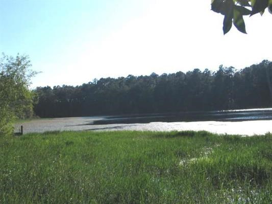 NORTH FLORIDA LAKEFRONT LOT FOR SALE