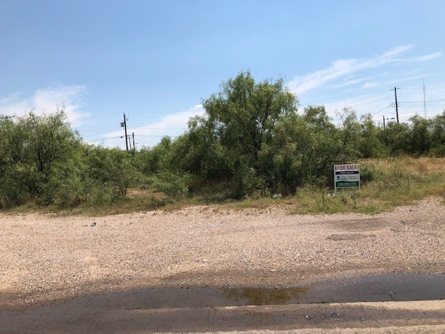 TWO CITY LOTS IN IMPERIAL, TX