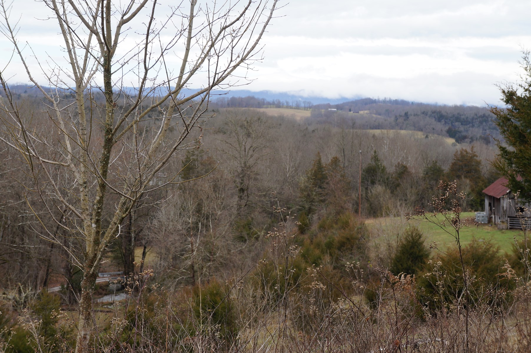 37 Acres of Farm Land For Sale in Tazewell, TN