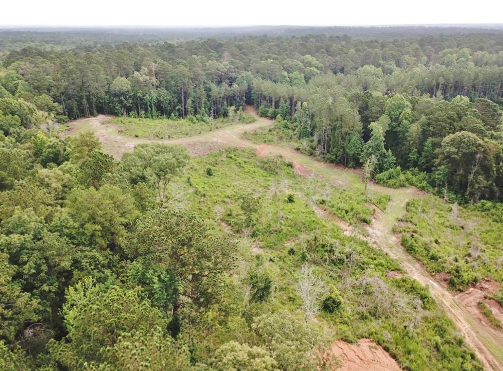 Small Hunting Tract Connecting to National Forest SW MS