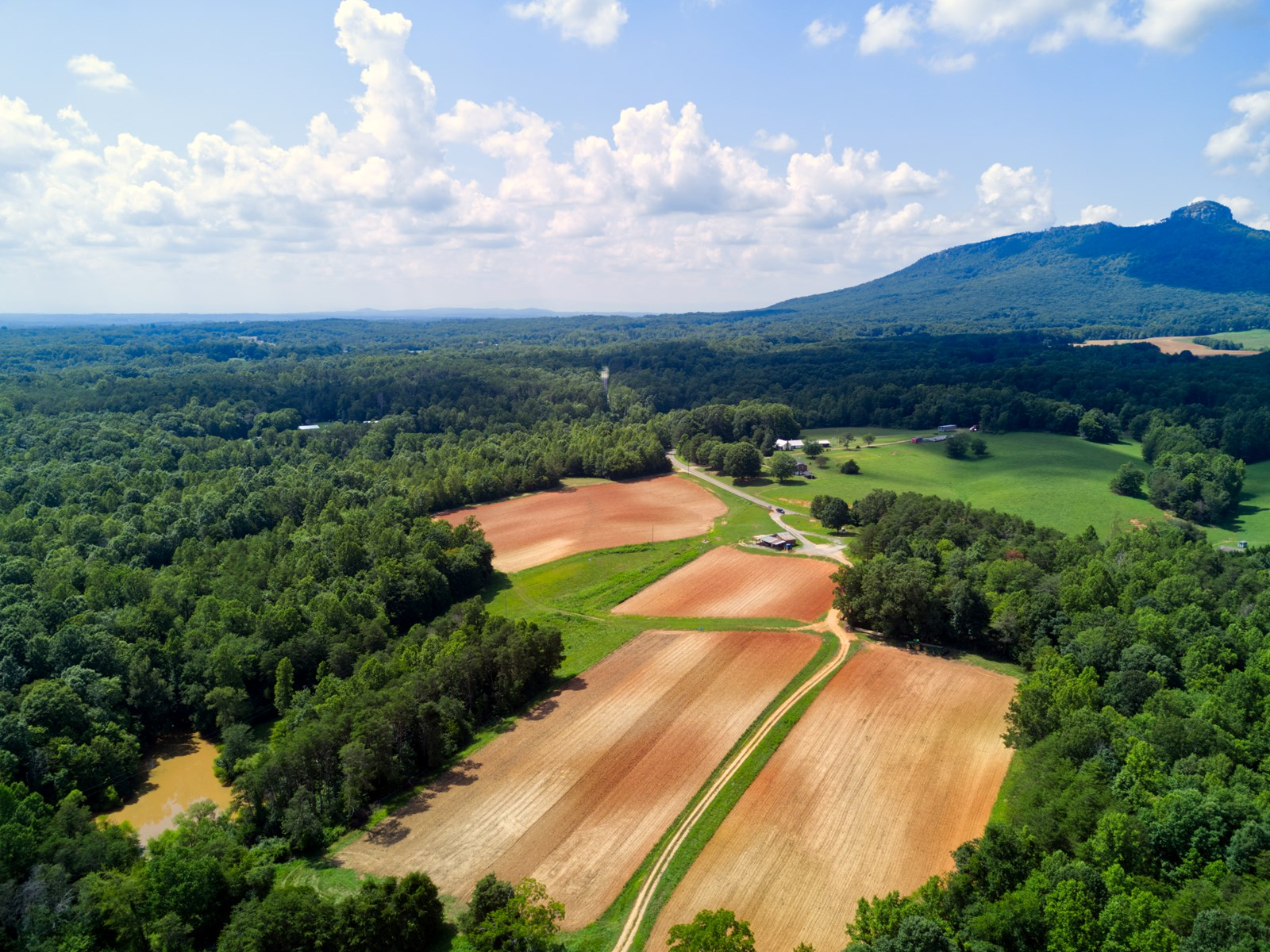 Farm for sale in Pinnacle NC