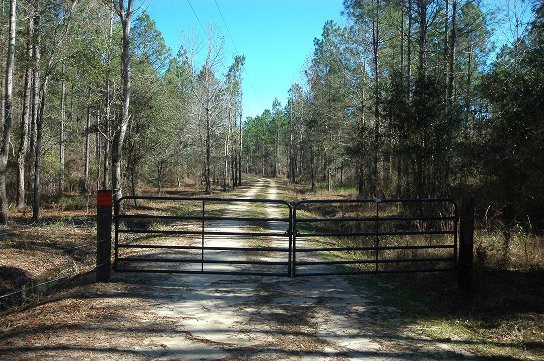 852 Acres for sale Gordon, Alabama-Houston County