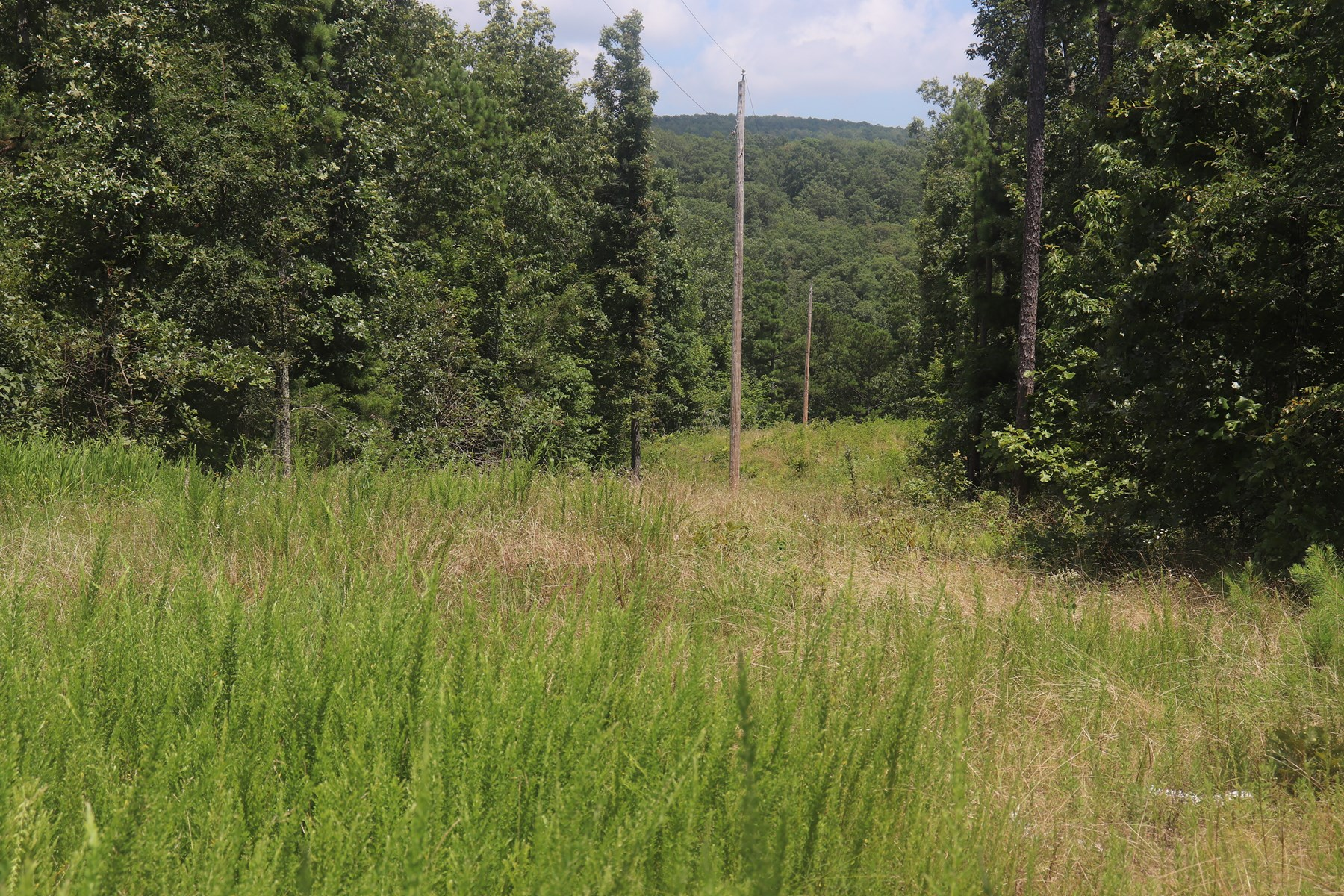 Hunting, Recreational, Residential Land in Van Buren County