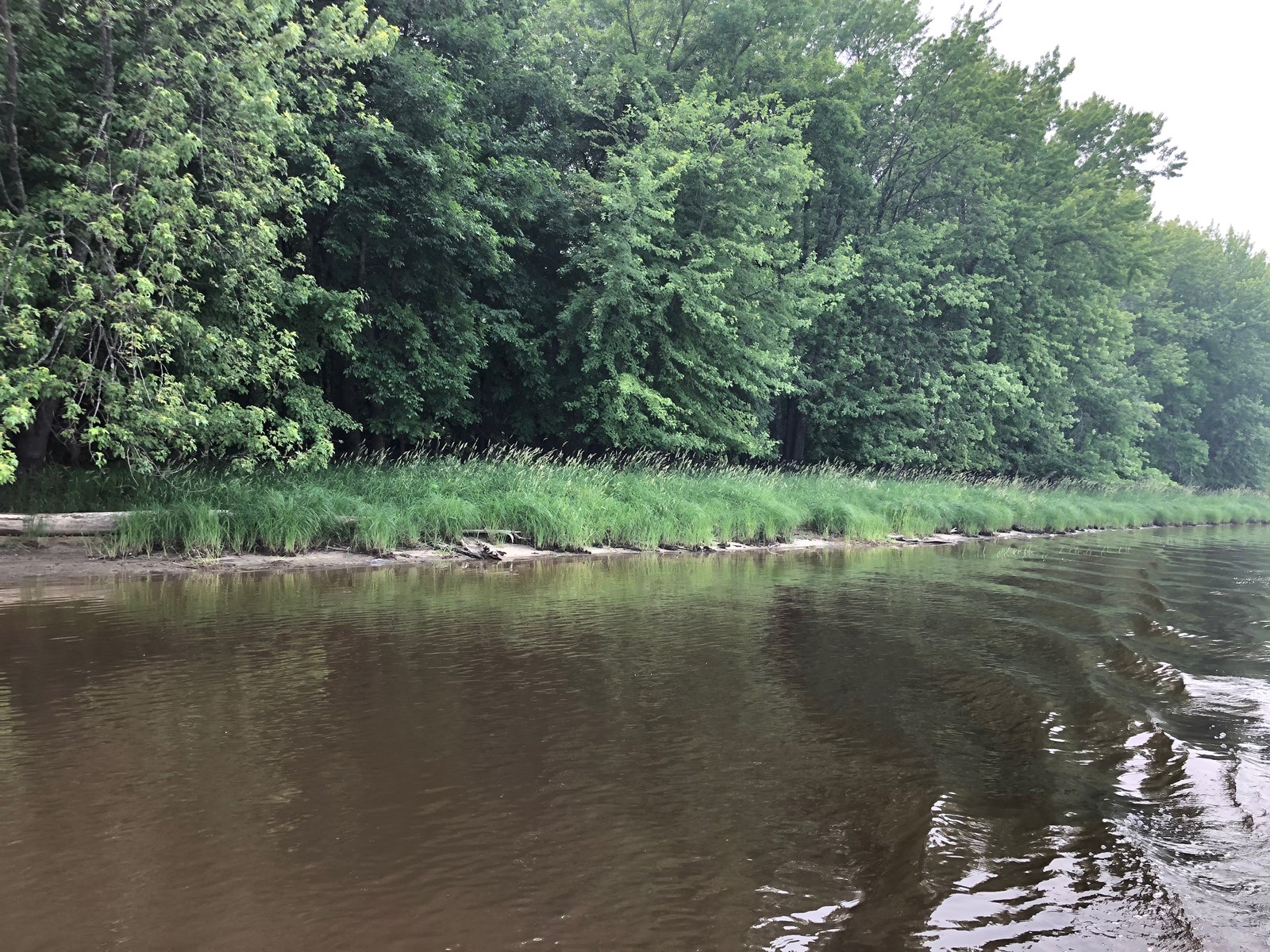 Riverfront Land for sale in Birchdale, MN