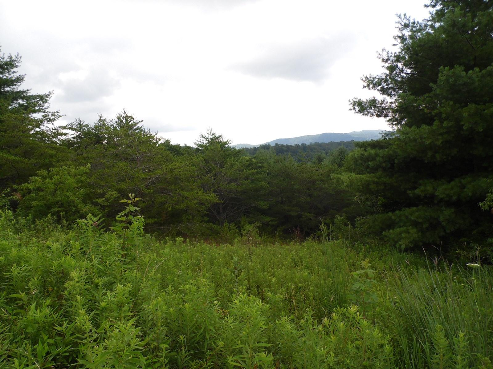 Long Range View, Mountain View, Pastoral View