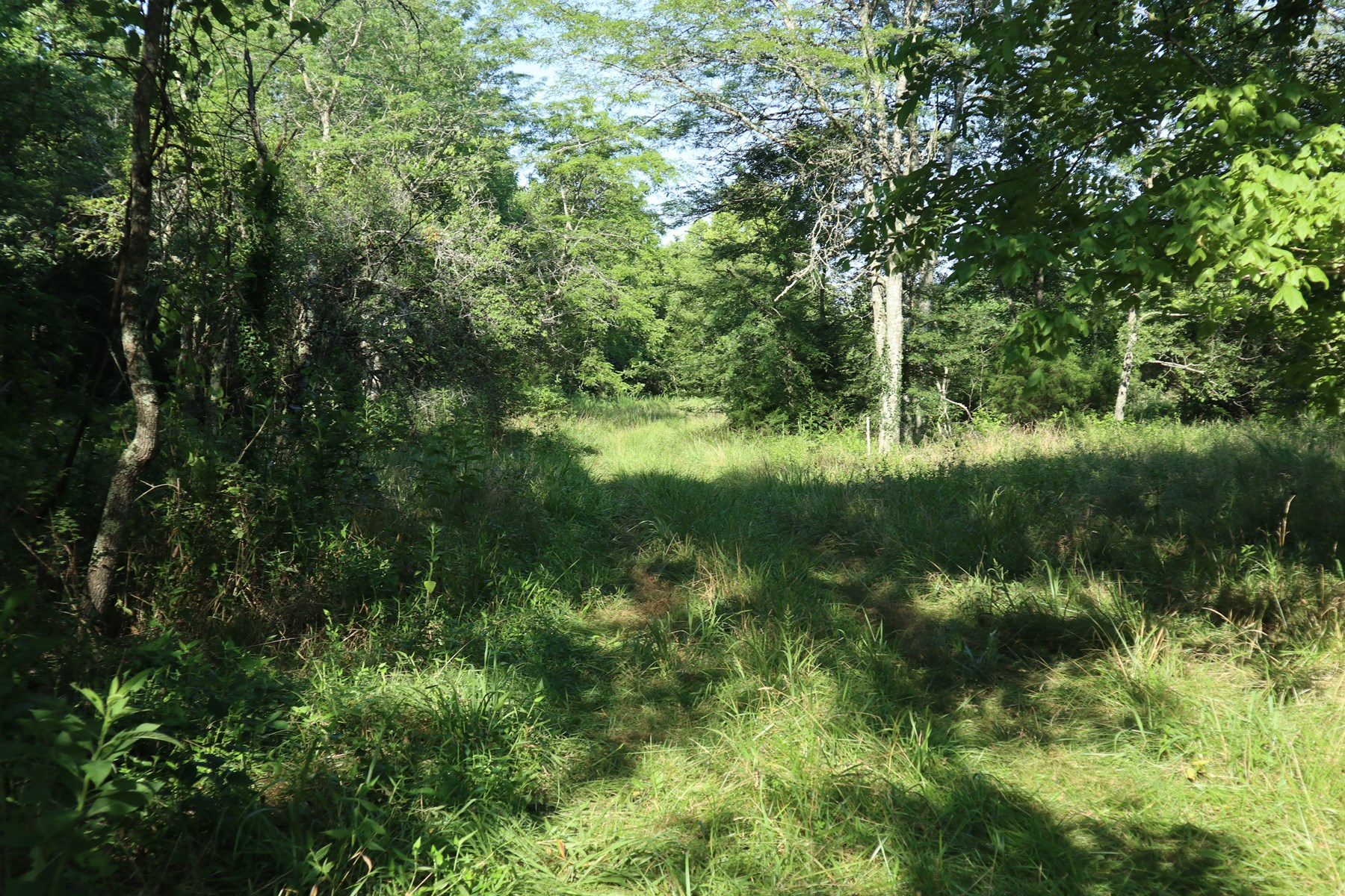 Hunting Retreat for Sale in North Central Arkansas