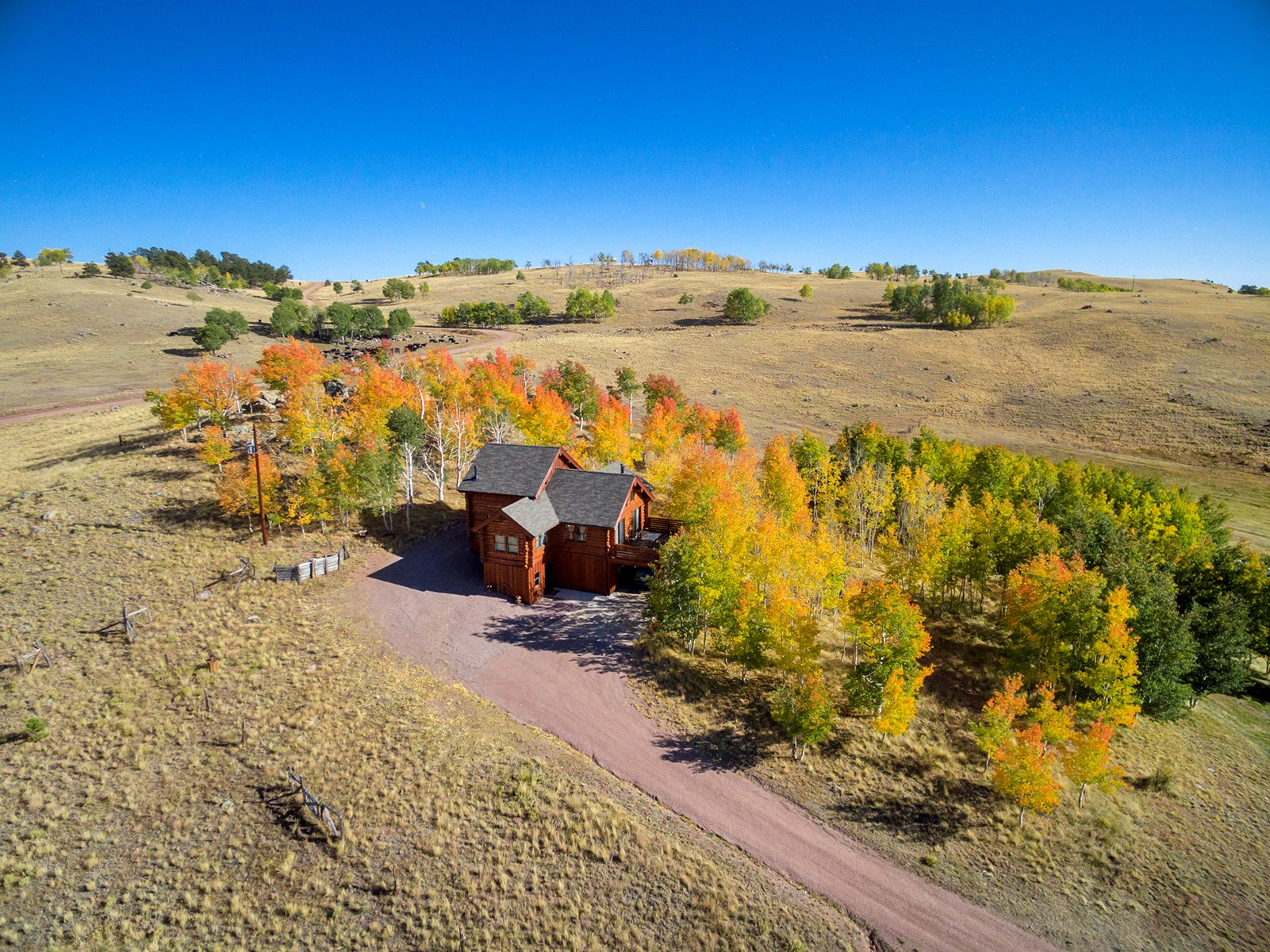Custom Log Home For Sale in Guffey, CO on 33 Acres