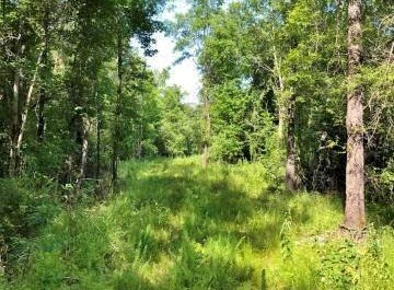 150AC Recreation Fishing Timberland Riverfront Lowndes Co MS