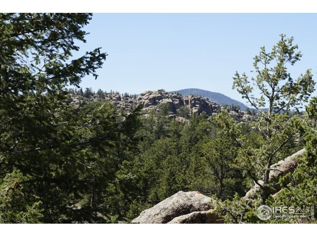 Colorado Mountain Golf Property