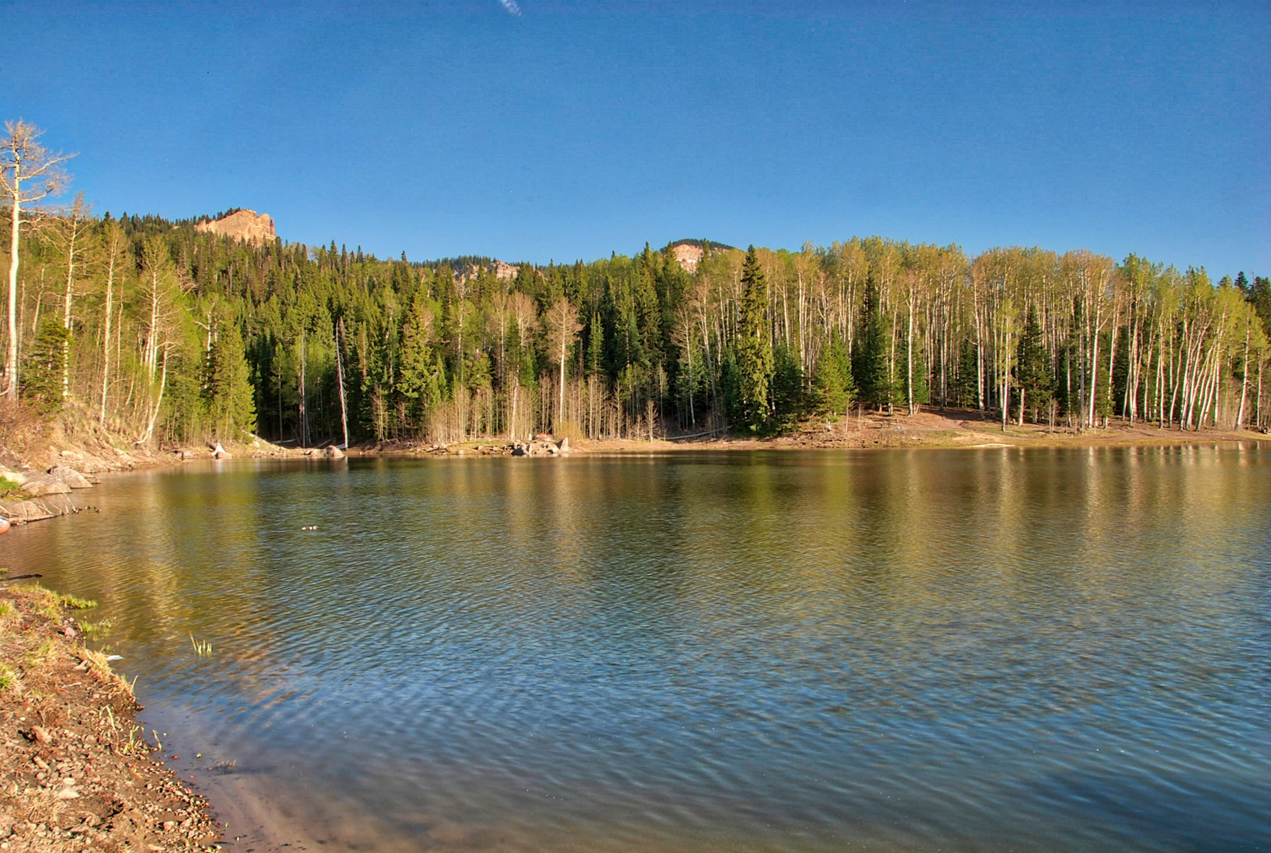 Colorado Hunting property