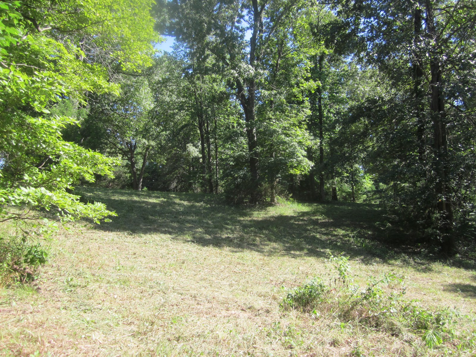 LAND NEAR BULL SHOALS LAKE IN FAIRVIEW, AR FOR SALE!