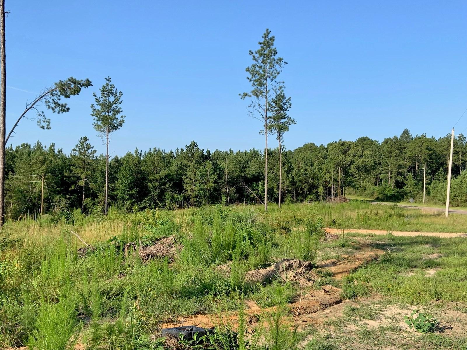 9.5 Acres Home Site Purvis School District, Purvis, MS
