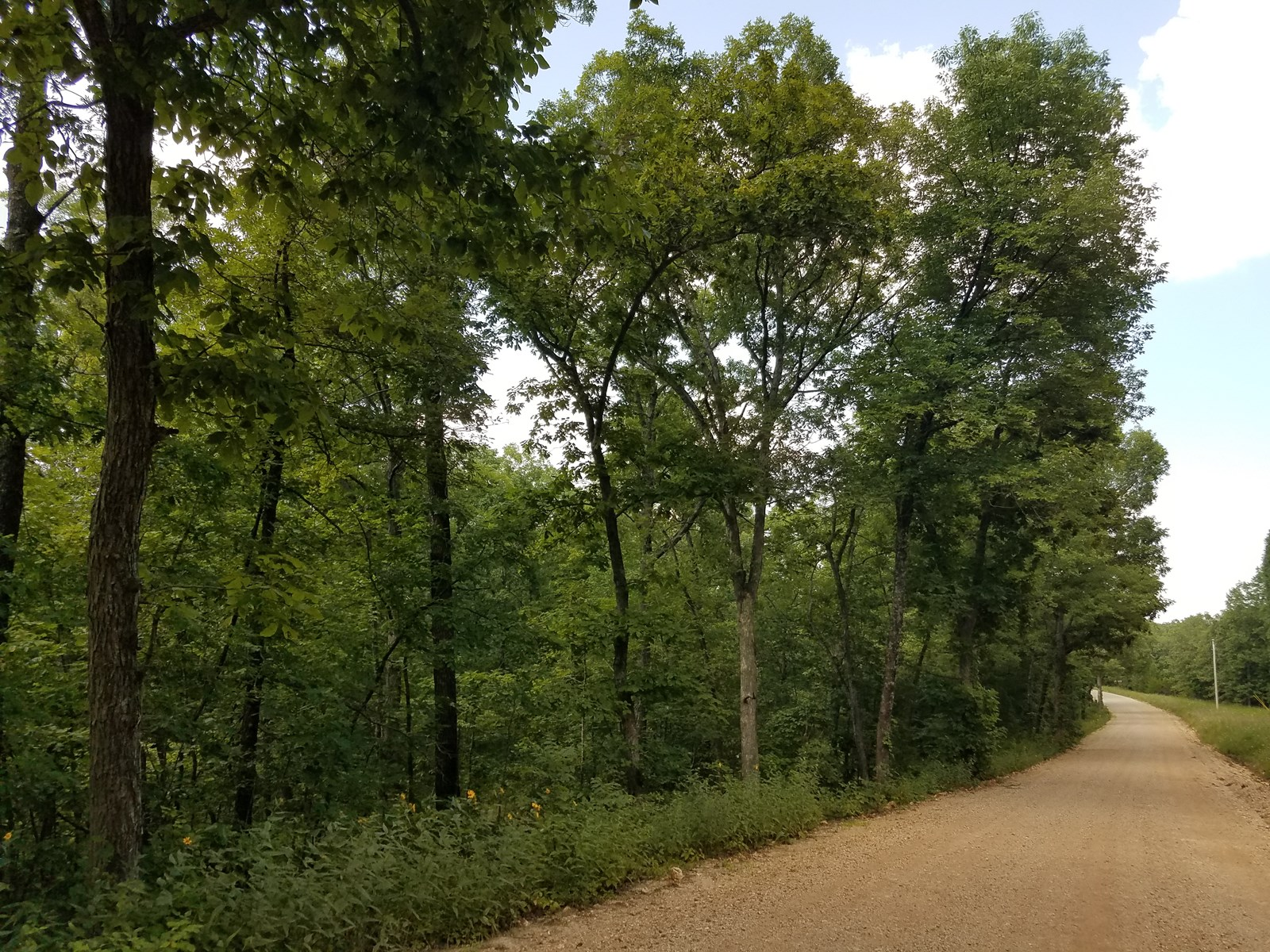 Land at Lake of the Ozarks! 6 Acres Vacant Wooded Land