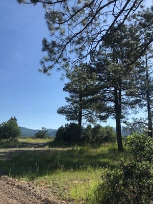 CHAMA NM LAND FOR SALE NEAR CHAMA RIVER WITH UTILITIES