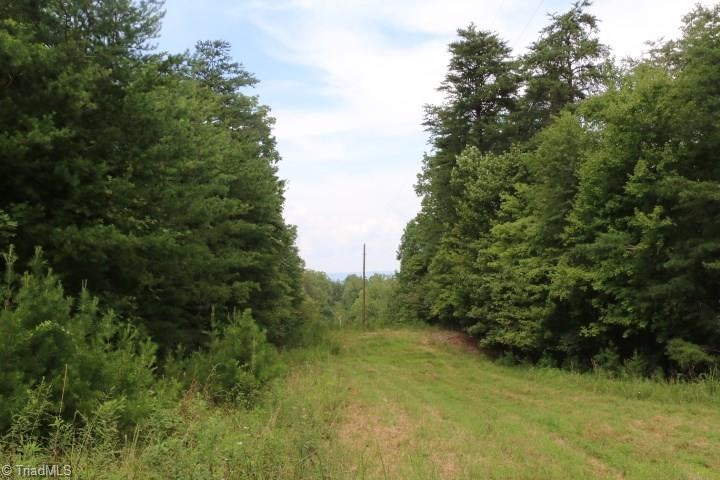 Drastically REDUCED build site 14 +/- acres with well