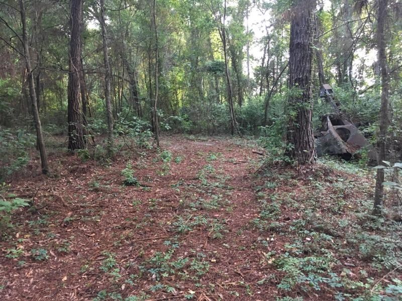 NORTH FLORIDA LAND FOR SALE