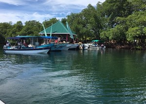 AS SEEN ON ISLAND HUNTERS, YOUR OWN ISLAND IN BOCAS DEL TORO