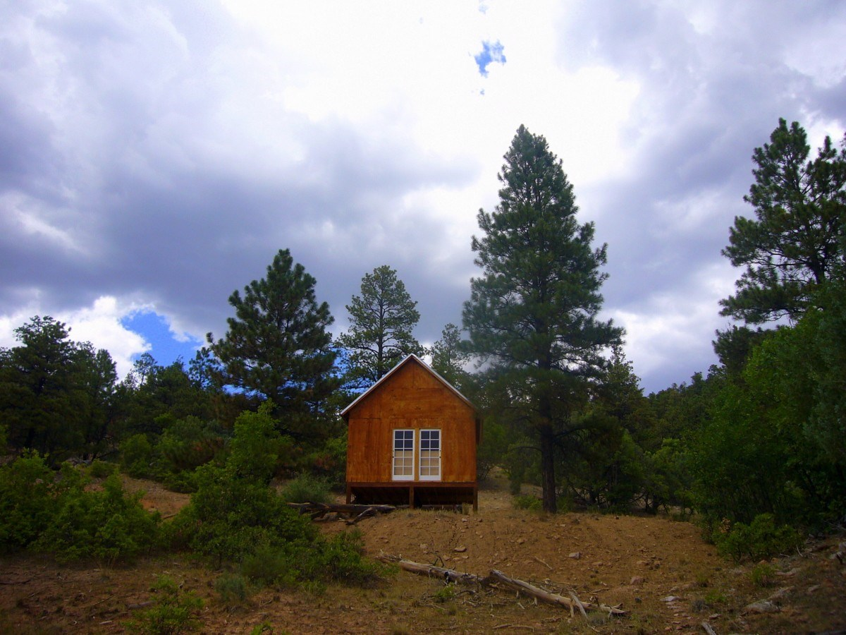 Vacant Land with Cabin for Sale Near Heron Lake, Chama NM