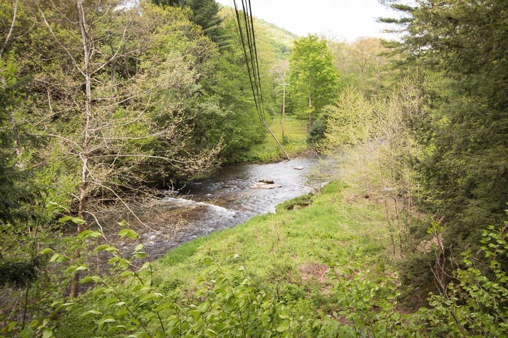 Fisherman's dream on Pine Creek