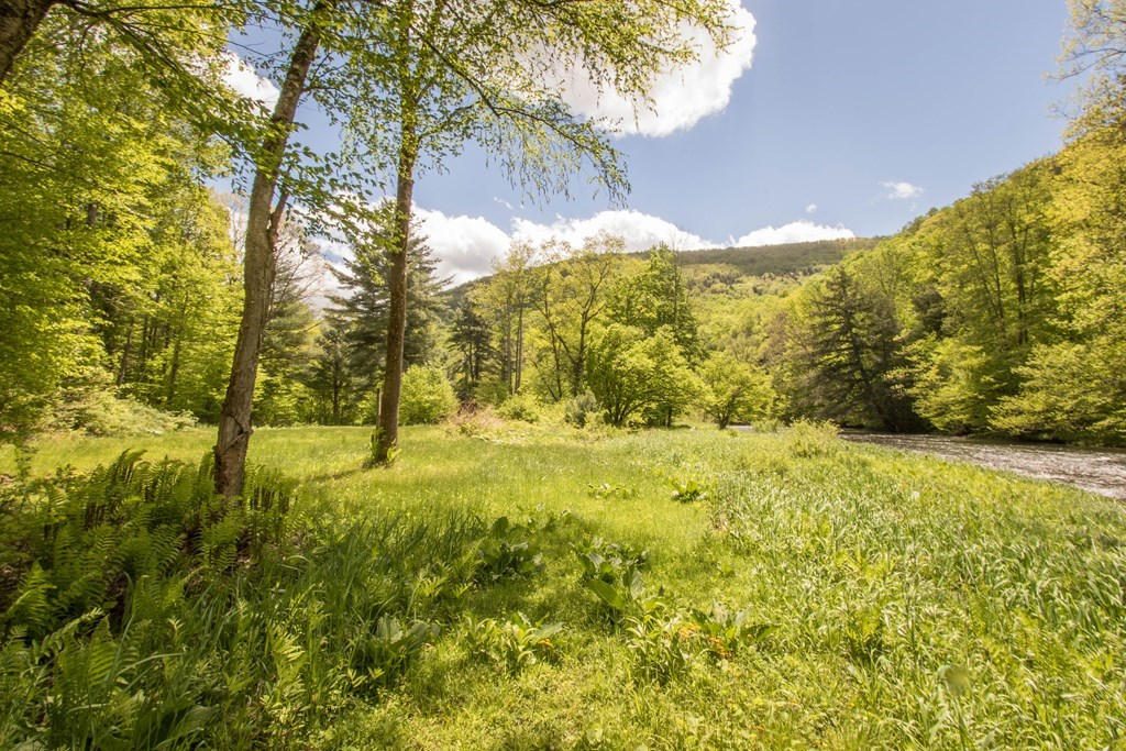 Private meadow level with Pine Creek