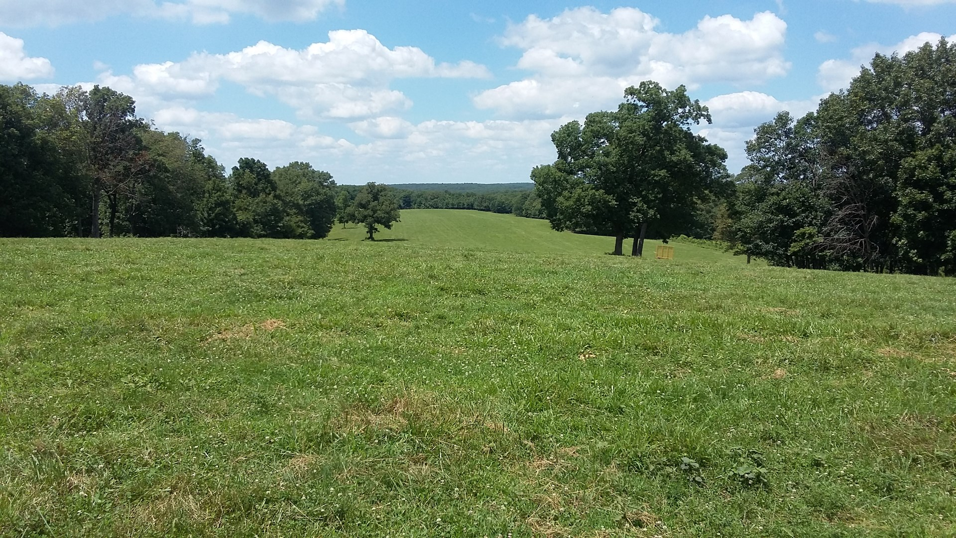 Hunting land for sale in Missouri! 200-acre cattle ranch/