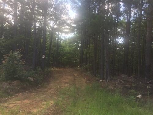 Recreational Deer Hunting Property for Sale Clayton,OK