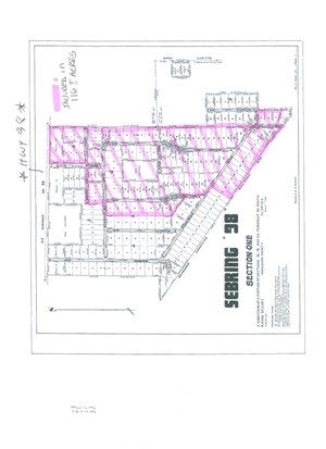123 ACRE PLATTED SUBDIVISION WITH 4.4 ACRES OF HWY. FRONTAGE