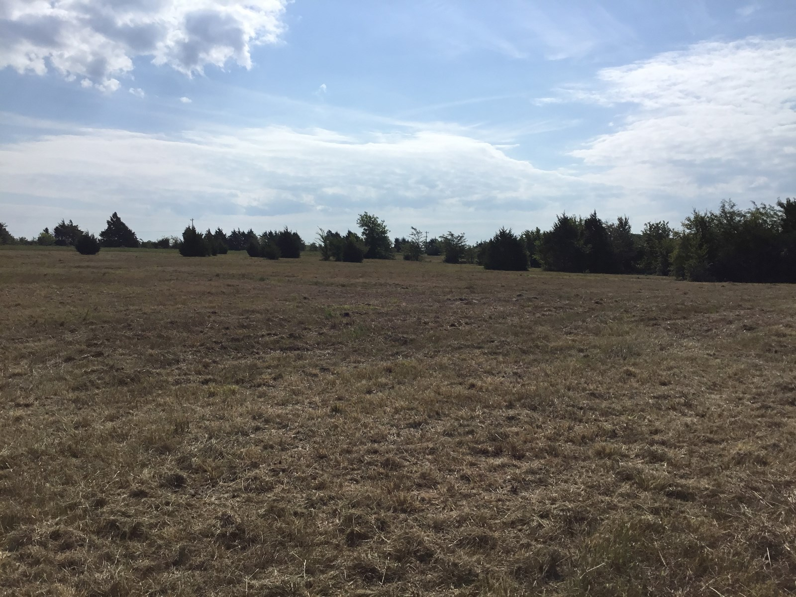 LAND FOR SALE, TERRELL, TEXAS