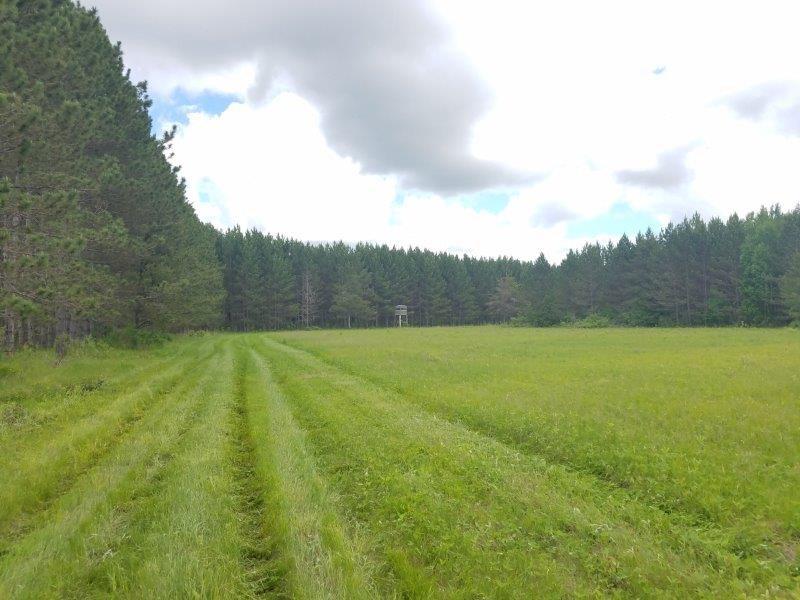 HUNTING LAND SEBEKA/NIMROD