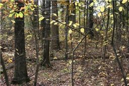 LAND FOR SELL IN MIDDLE TENNESSEE