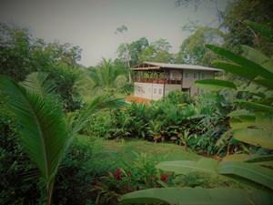 TROPICAL LODGE OR B&B NEAR BLUFF BEACH BOCAS DEL TORO PANAMA