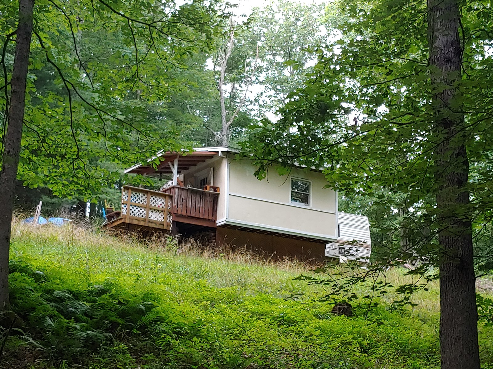 Secluded Mountain Property for Sale in Wythe County VA!