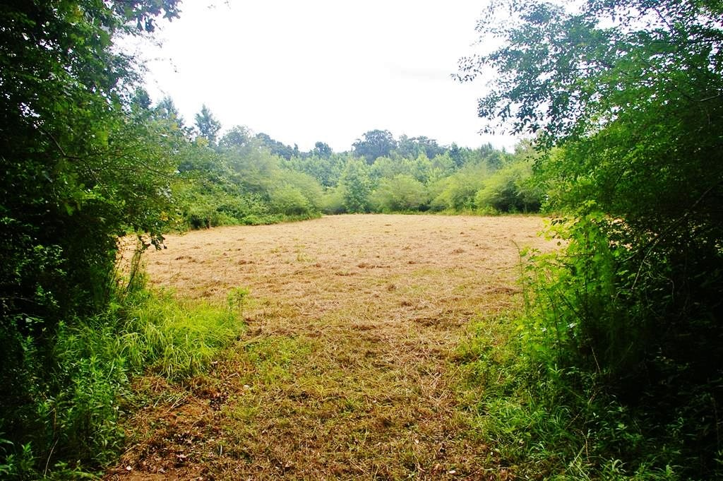 41.7 Acres Hunting Land for Sale Smithdale, Amite County, MS