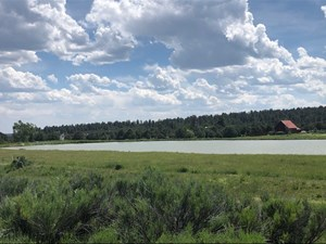LOT FOR SALE SOUTH OF CHAMA AT FORT HERON GATED COMMUNITY