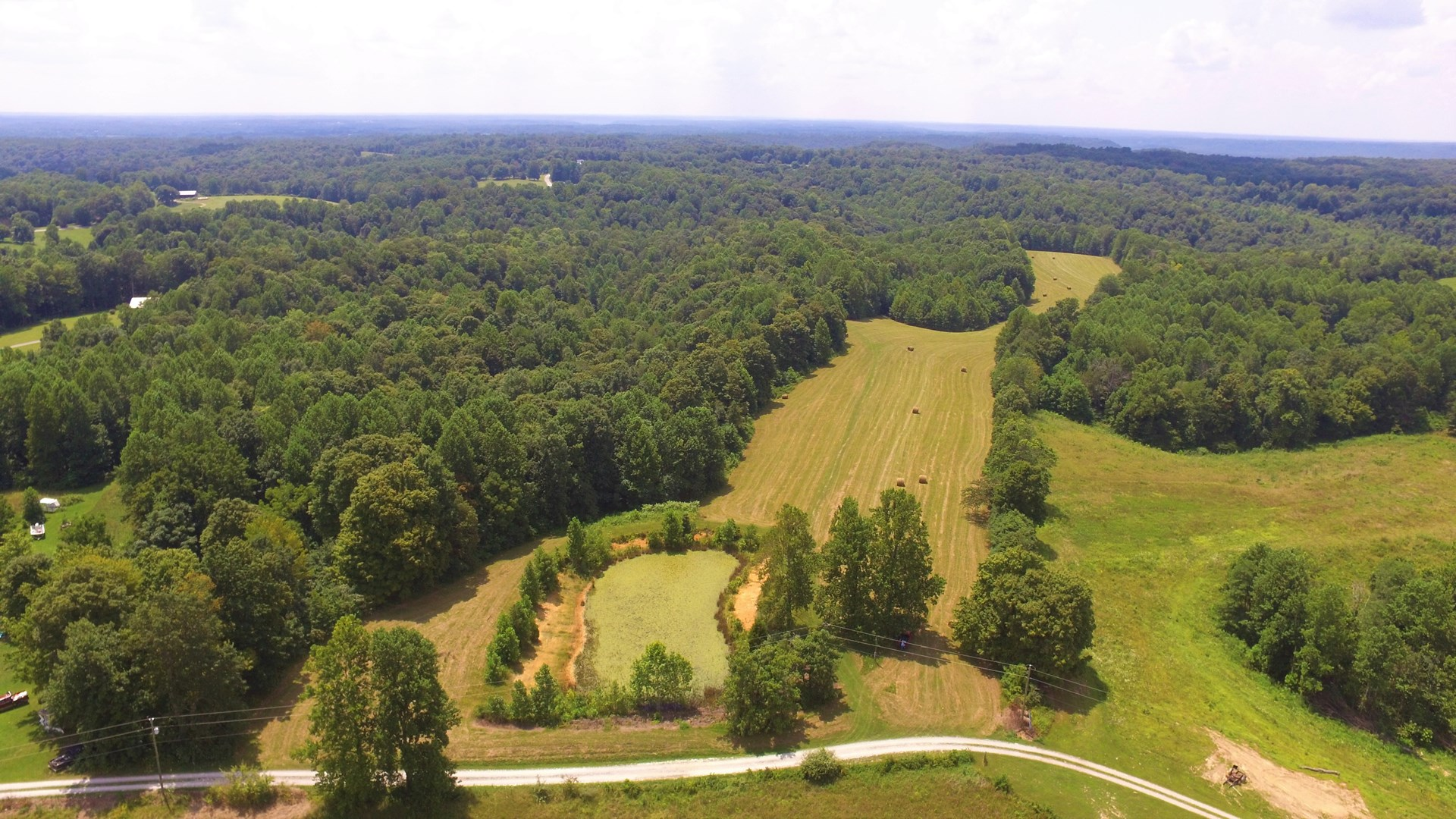 42.5 ACRES-BUILDING SITES-POND-PASTURE-WOODLAND-LIBERTY, KY.