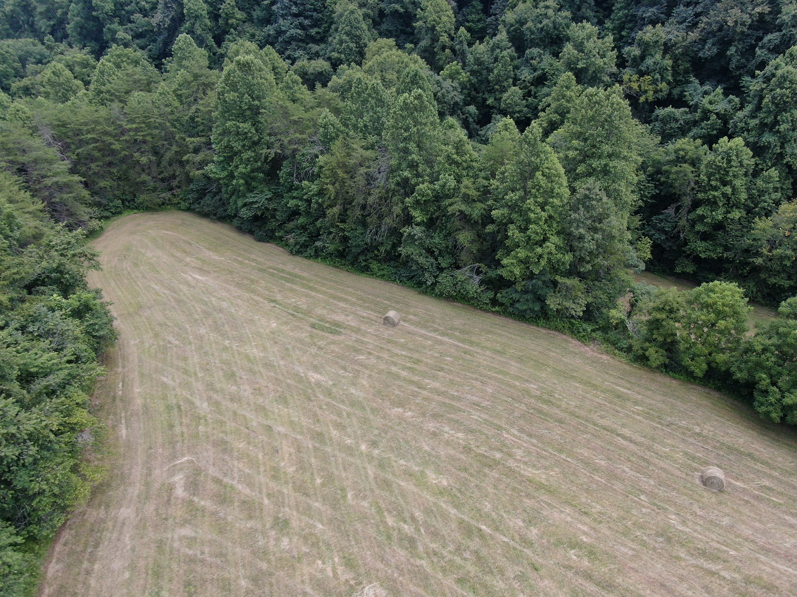 Tennessee Hunting Land for Sale Claiborne County- Tazewell
