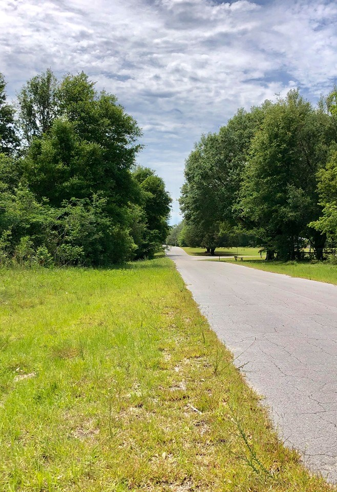 Land for sale in homes only subdivision in Trenton, FL