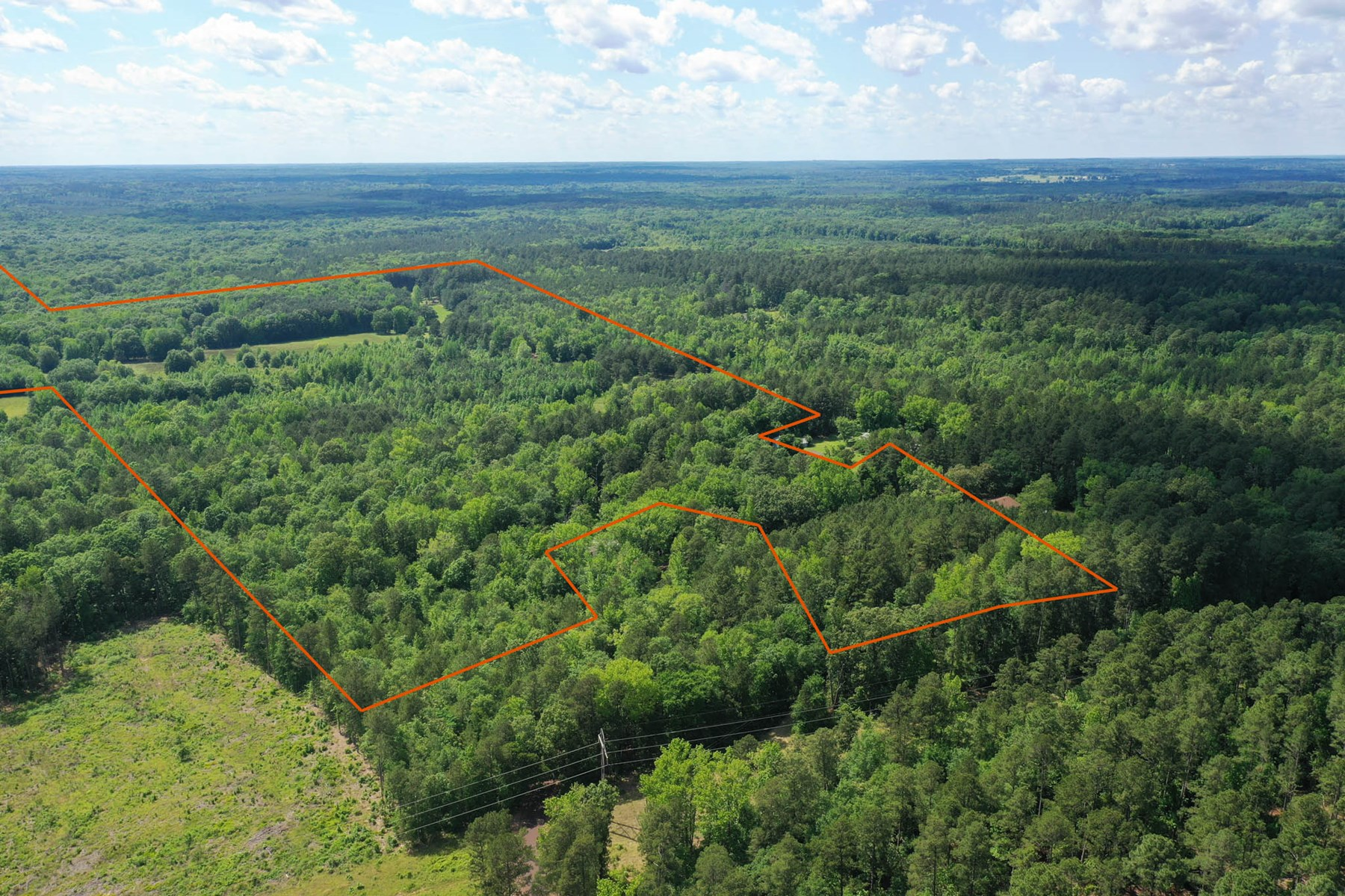 Hunting Ranch, Timber, Cabin, Creek in Cass County, TX