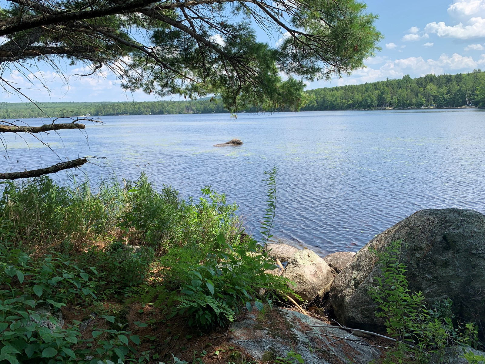 Lakefront Land For Sale in Burlington, Maine