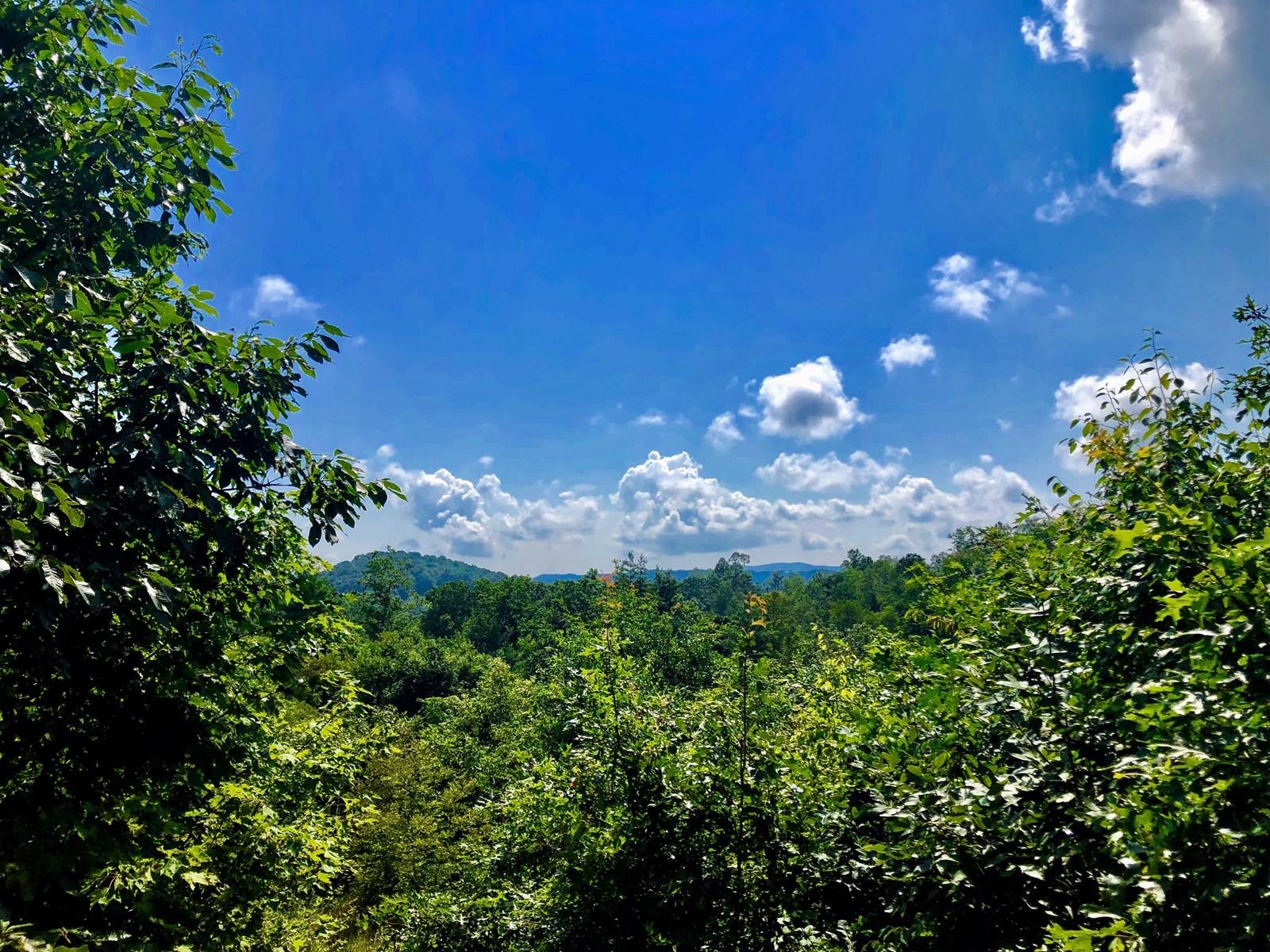 Remote Mountain Getaway in Floyd County VA!