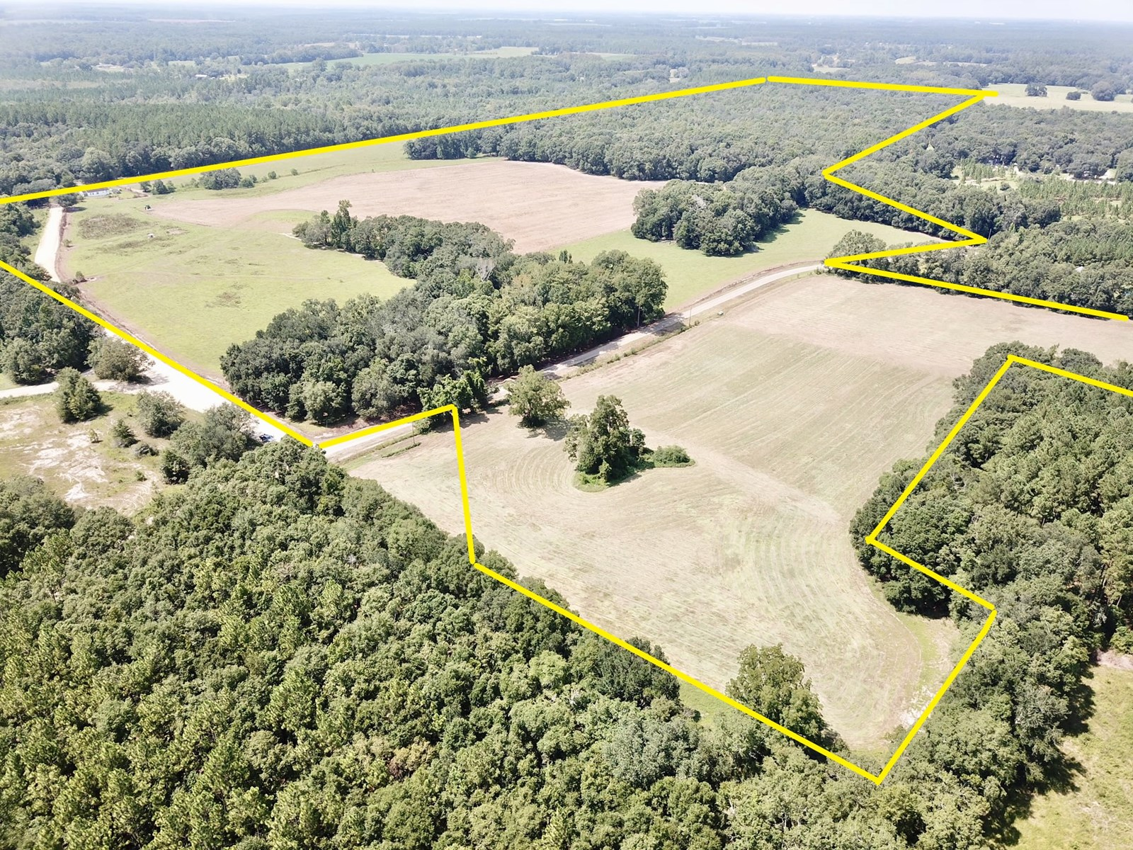 132 ACRE FARM FOR SALE IN BLACK, ALABAMA W AN OLD FARM HOUSE